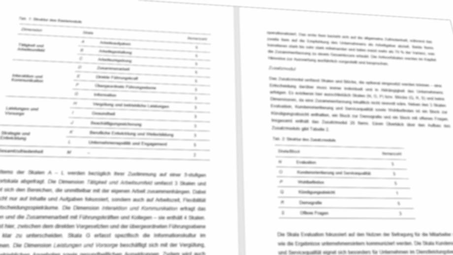 Auszug aus dem Handbuch des Mitarbeiterfragebogens