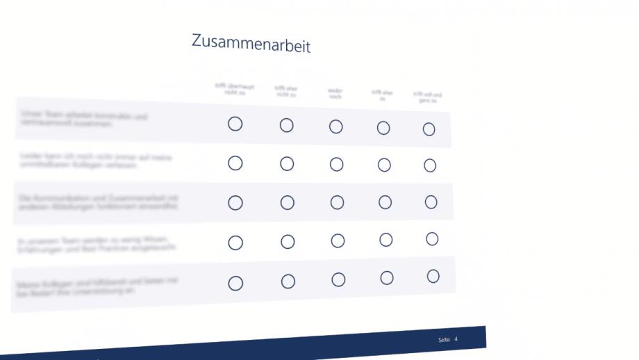 Auszug einer Skala für den Mitarbeiterfragebogen